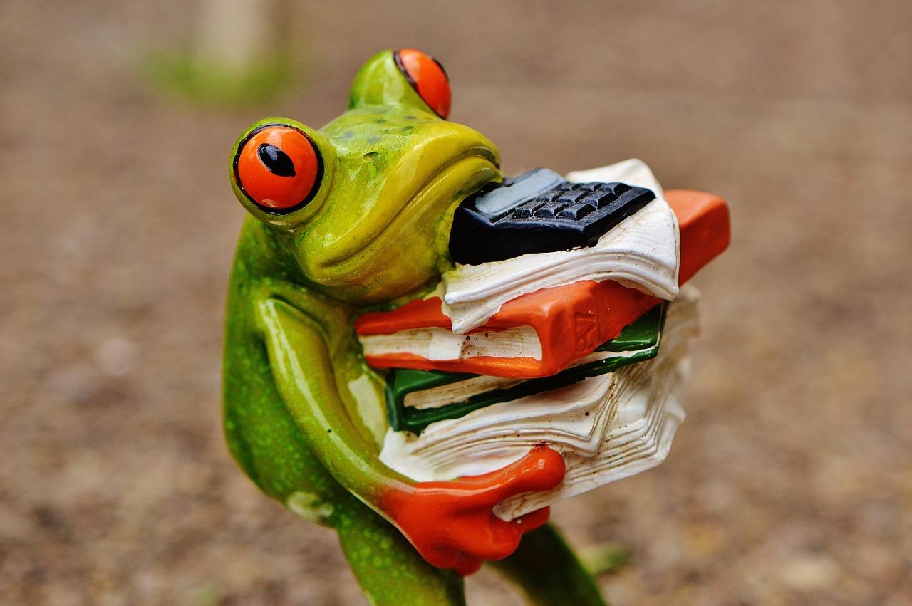 frog-1339904_1280.jpg